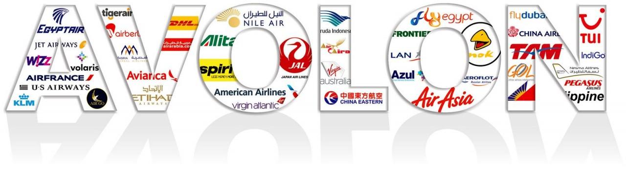 Avolon предсказывает потребности Китая в 3200 новых самолётах к 2026 году