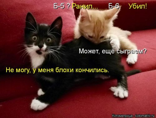 Новая котоматрица на выходны…