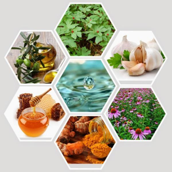Природные антибиотики для борьбы с инфекциями