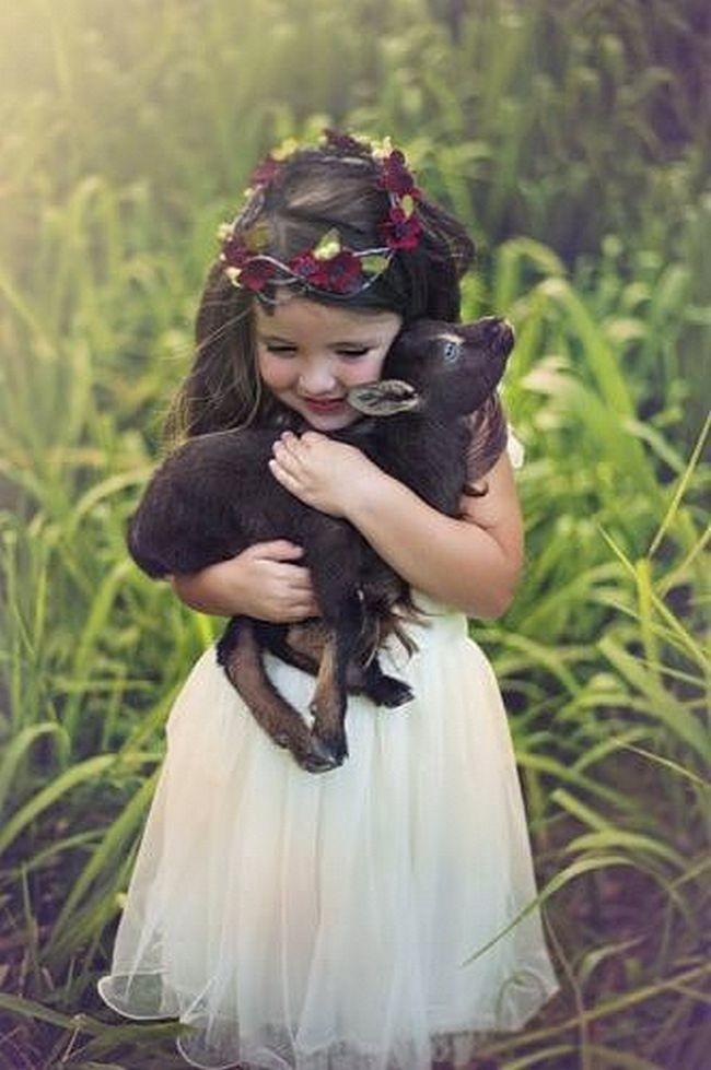 41. Беспредельная нежность... Любовь, дети, животные