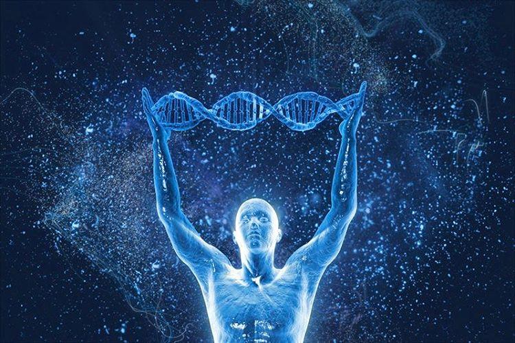 Картинки по запросу молекула днк