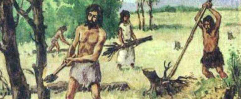 Земледели и цивилизация. Гипотеза происхождения