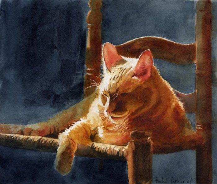 Рыжий кот. Автор: Rachel Parker.