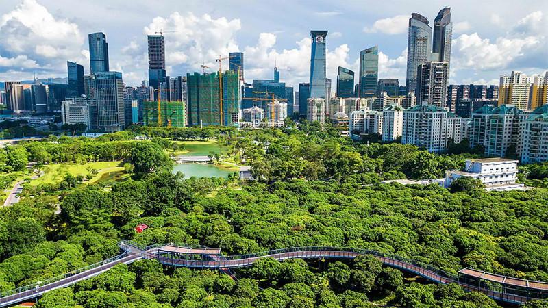 Ближе к природе: над китайским парком построили крутые пешеходные мосты