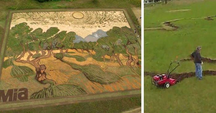 Художник воссоздал картину Ван Гога на поле площадью 5000 квадратных метров в мире, ван гог, деревья, земля, картина, поле, художник