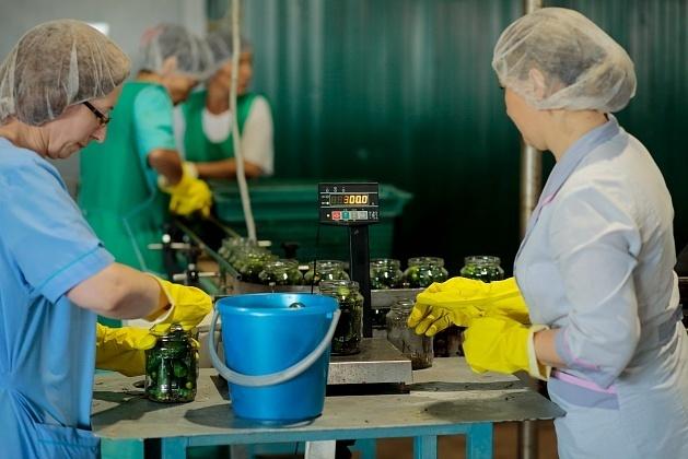 В Волгоградской области открылся консервный завод