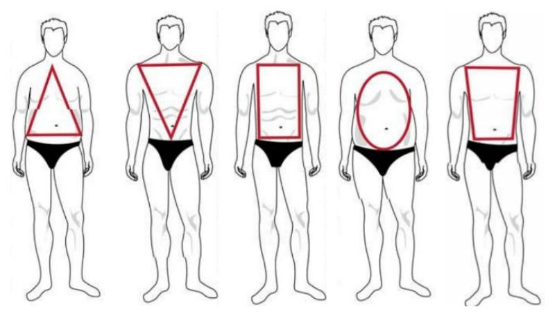 Как сделать узкую талию и широкие плечи