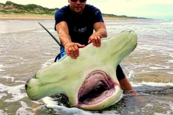не обычное видео про рыбалку