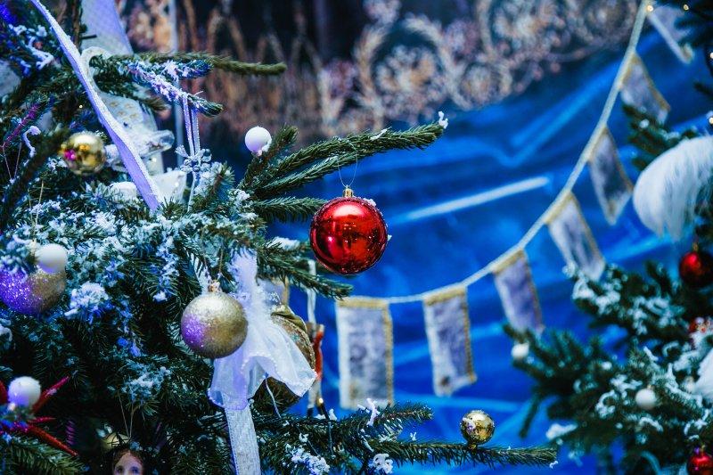 В Подмосковье уже срубили главную новогоднюю ель страны