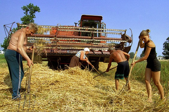В Госдуме предлагают вернуть колхозы