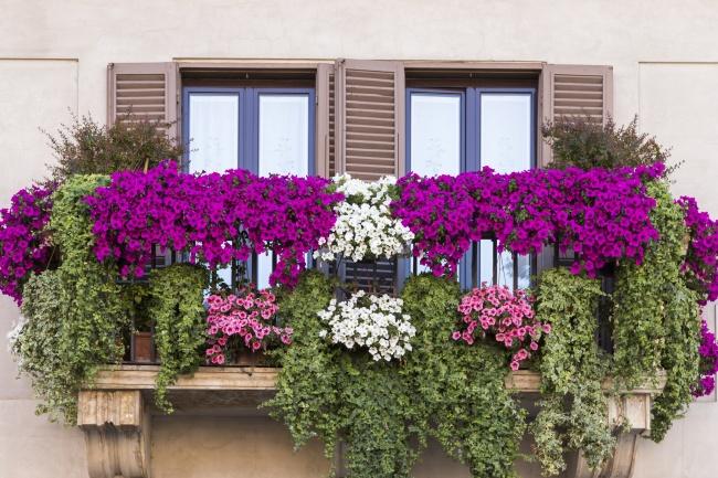 18 способов устроить сад у себя дома