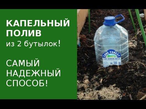 Капельный полив из пластиковых бутылок. Самый лучший способ