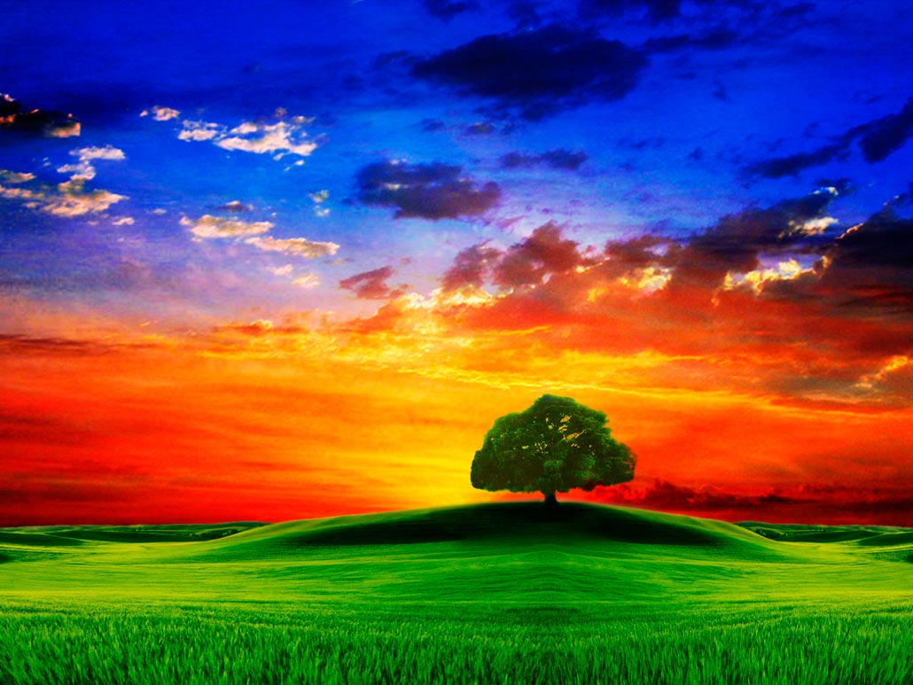 картины природы красивые фото