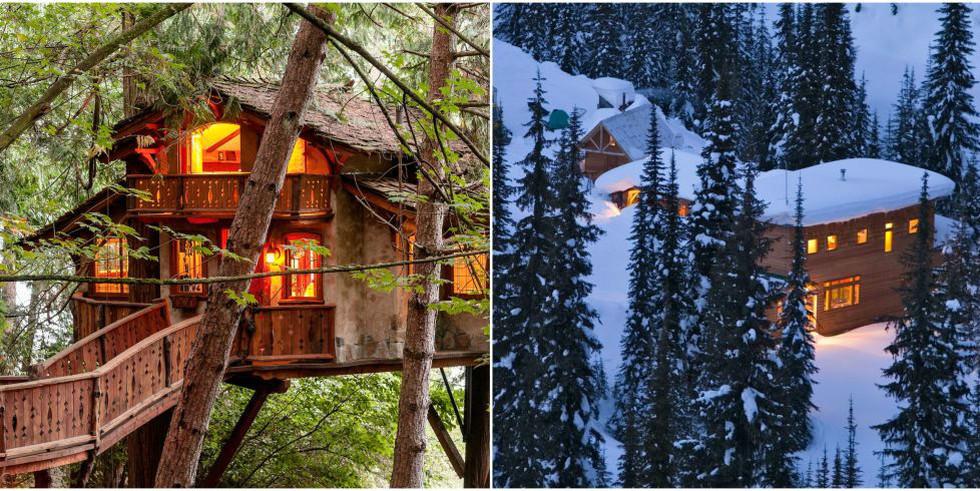 Лесные дома, которые станут вашей мечтой