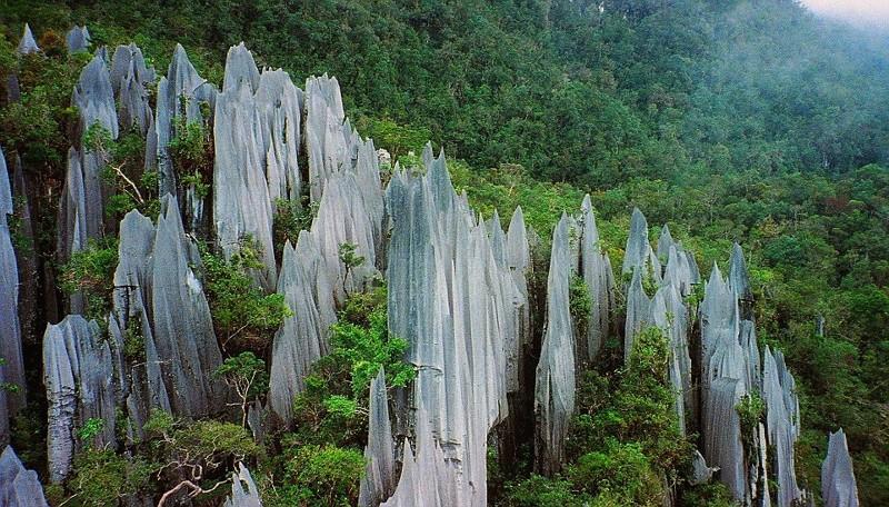 Борнео, Малайзия отдых, путешествия, туризм, экология