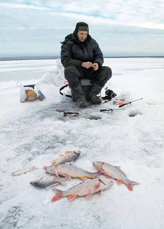 где ловить сазанов на озере