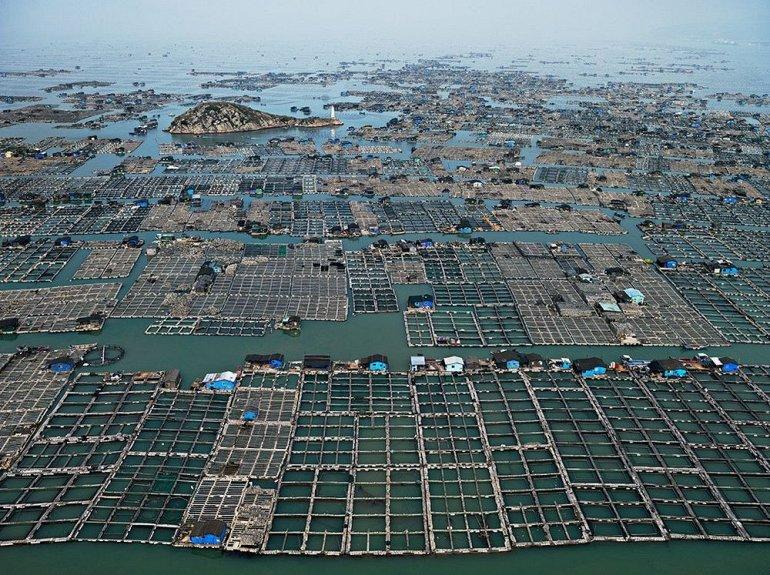 плавающие фермы китая
