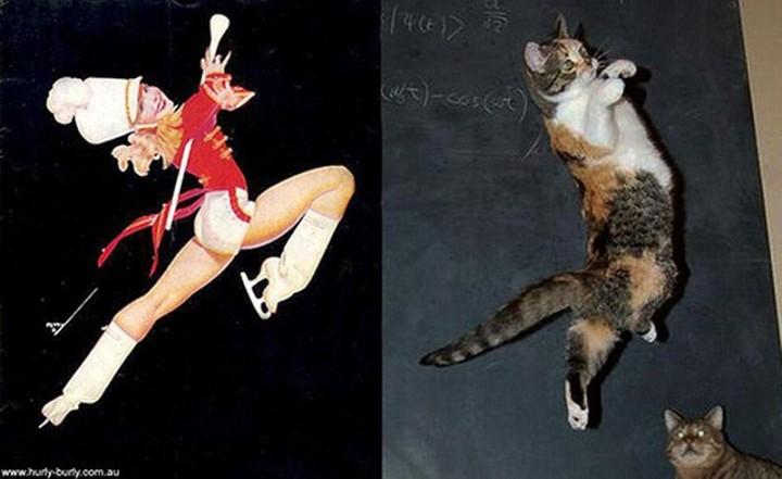 pinupcats15 Кошки и девушки в стиле пинап