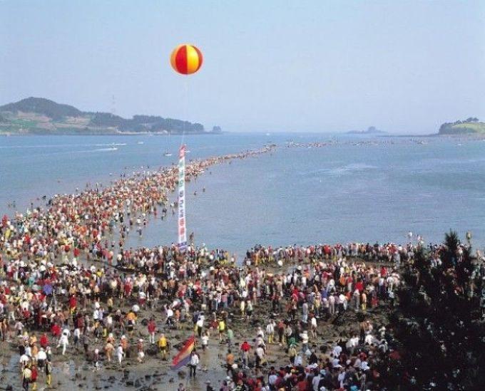 Чудо Моисея в Южной Корее: у острова Чиндо расступается море