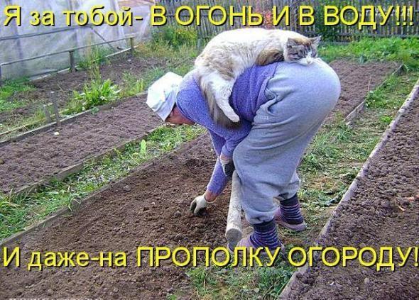 gruppovoy-pyaniy-seks-onlayn