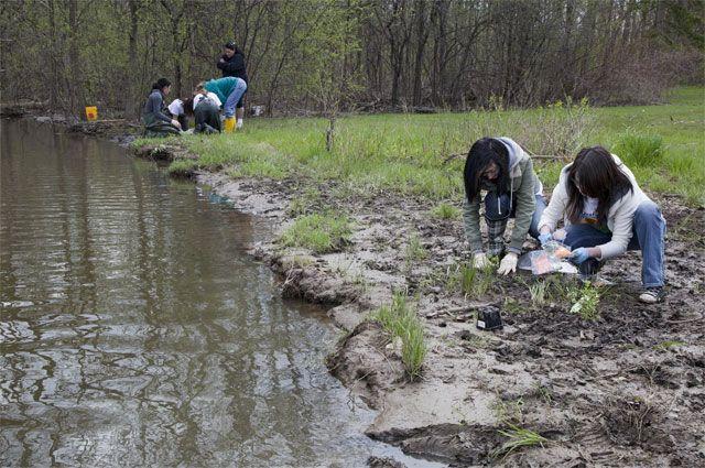 «Зеленая» программа. «Экопросвет» научит студентов РФ заботится о природе