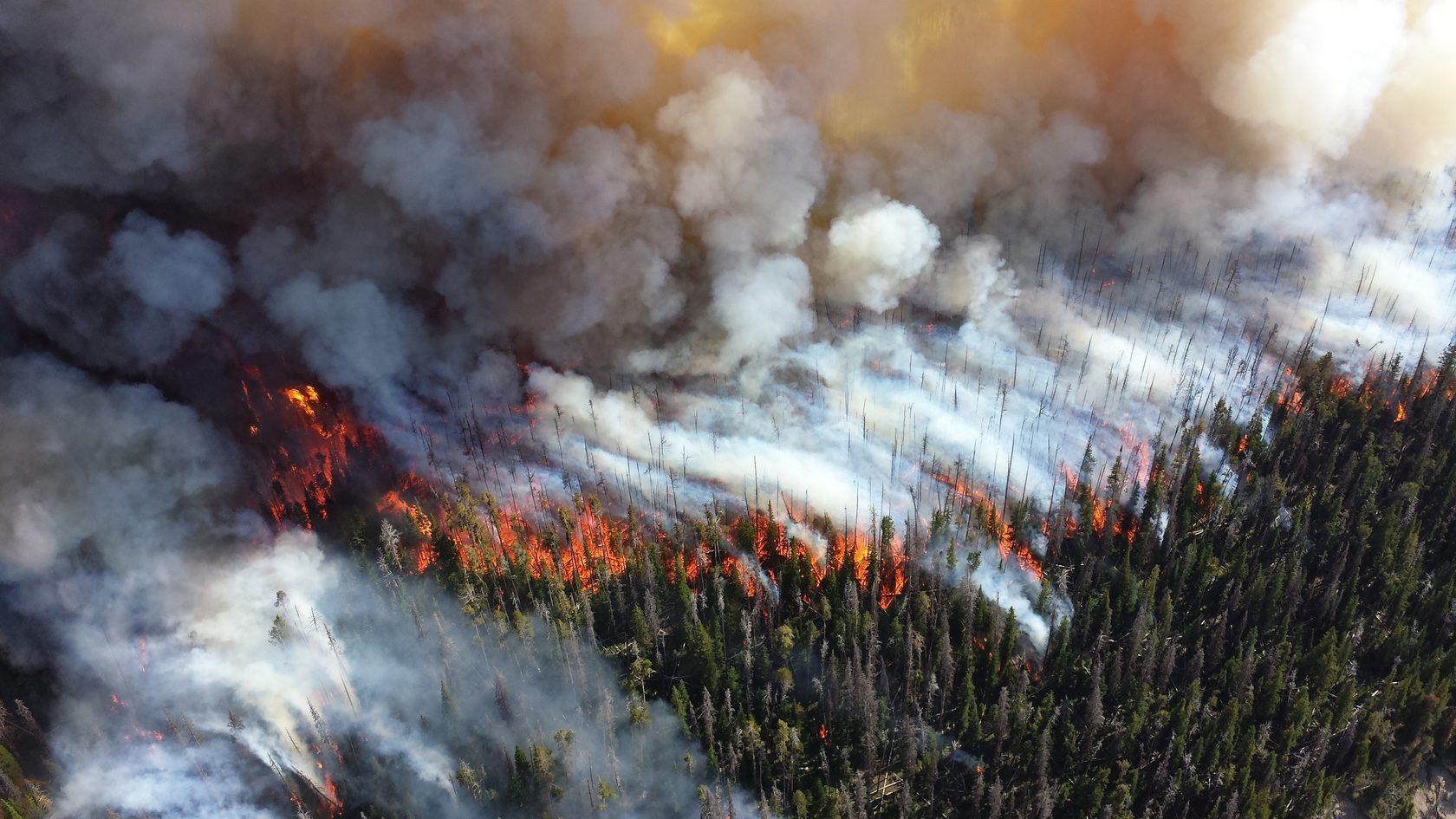 Пожары в Сибири и на Аляске …