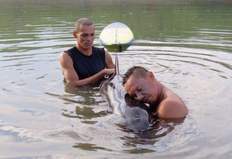 04-surfistas-delfin
