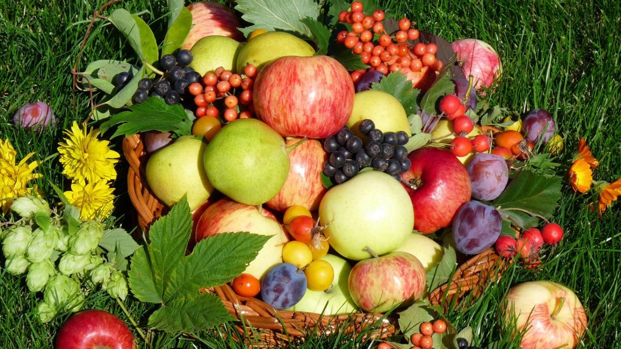 Как правильно собирать урожай - срывать, срезать, отщипывать?