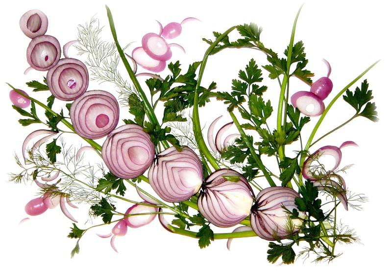 АРТ-САЛАТ: художница рисует картины с луком, укропом и петрушкой