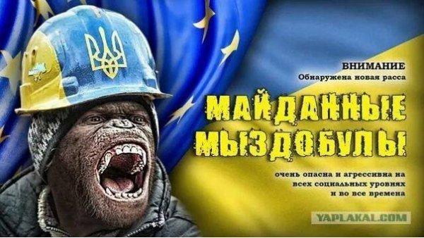 Звучат призывы идти на Киев