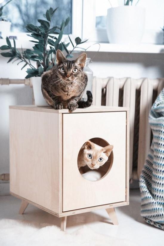 Дом, в котором живет кот: несколько идей для комфортной жизни вашего любимца