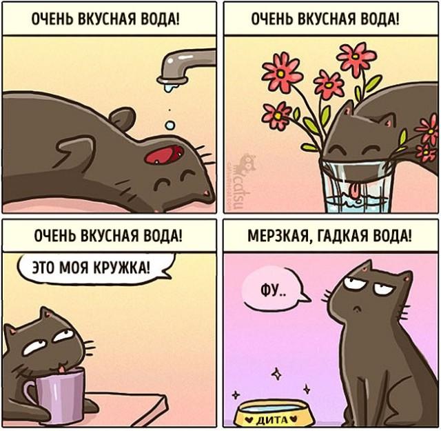 Когда в доме есть кот
