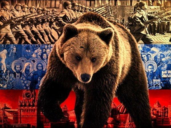 Честное признание иностранцев: В России нас поразило 7 вещей