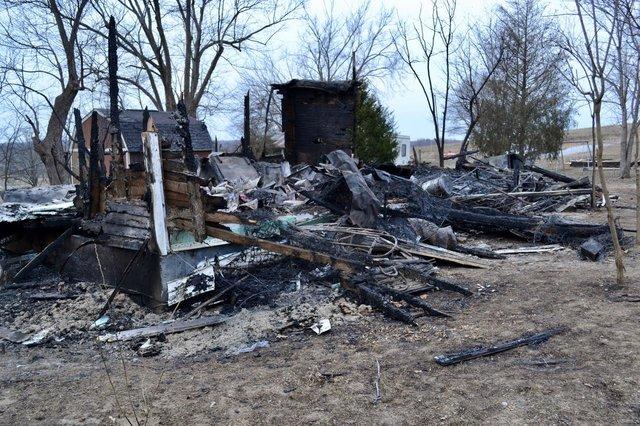 Спасатели обнаружили в сгоревшем доме более 30 животных, нуждающихся в помощи