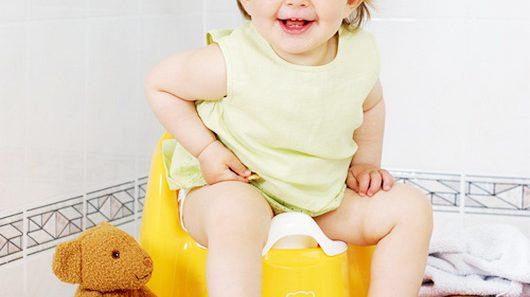 Как приучить ребенка к горшку в 1, 2, 3 года — полезные советы родителям. Приучаем ребенка к горшку за 7 дней — интересная методика.