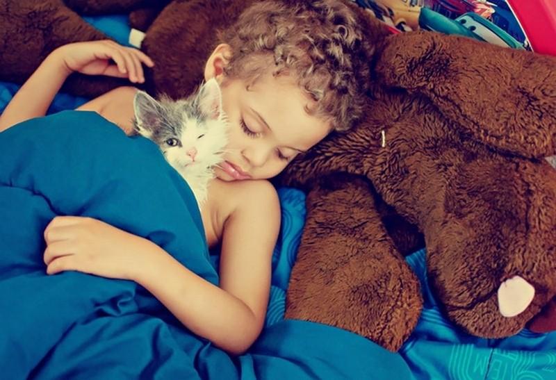 8. Ещё поспим. Любовь, дети, животные