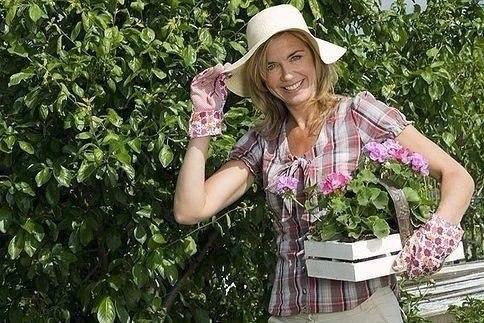 Удобряем огород без химии