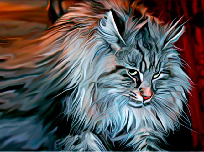 Интересные факты о кошках (3)