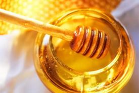 мед для укоренения
