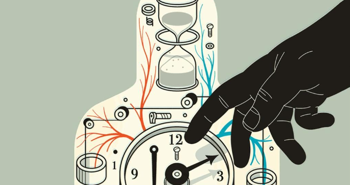 Как биоритмы влияют на наше здоровье