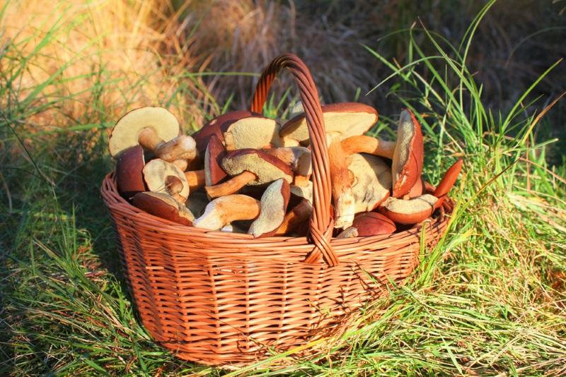 грибные котлеты без муки