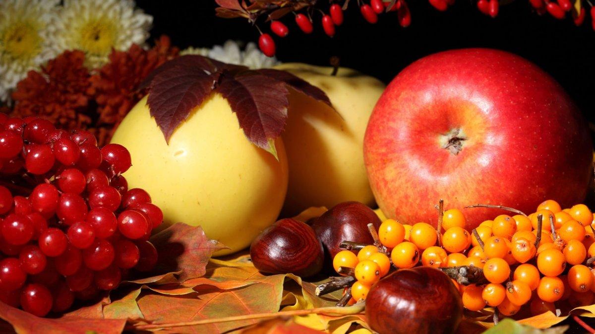 Осенние ягоды. Осенних ягод карнавал