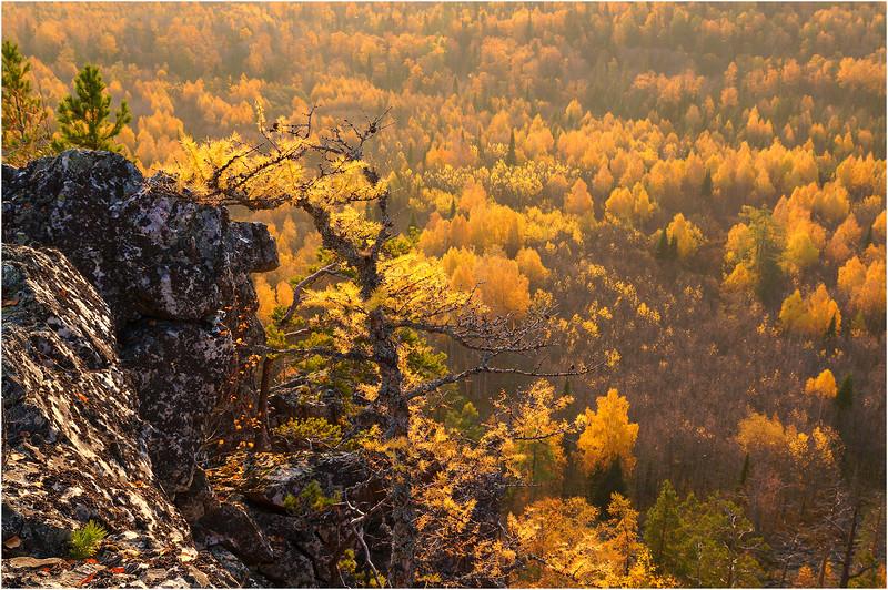 Эта песнь о тебе - мой край, Южный Урал!