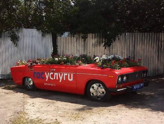 Шикарная автоклумба от МРЭО на улице Ростова позабавила местных жителей
