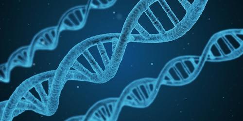 Ученые обнаружили генетическую мутацию, которая полезна для здоровья человека