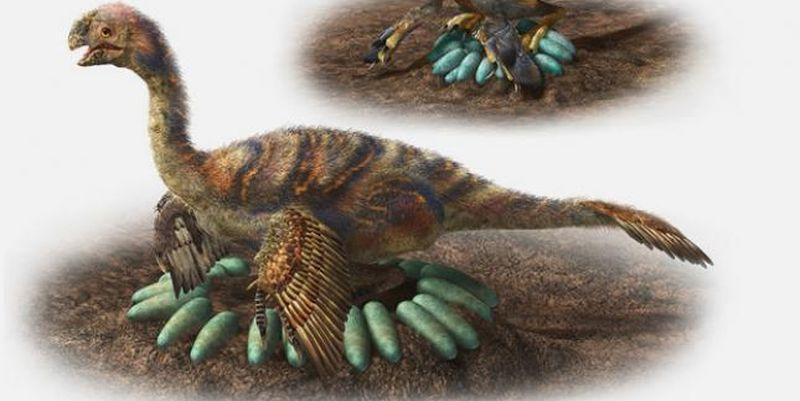 Как тяжелые пернатые динозав…