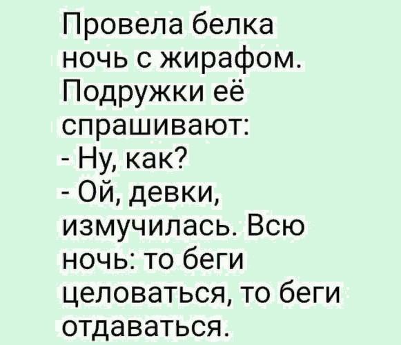 Белка, ты дошутишься... Улыбнемся))