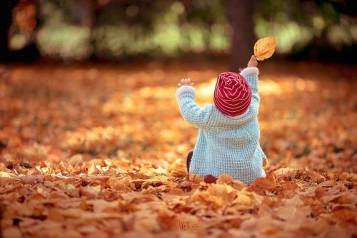 Осенняя красота в фотографиях