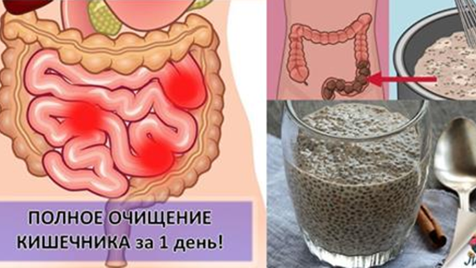 Очистка кишечника и желудка в домашних условиях