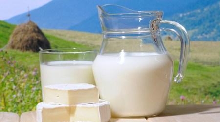 Виды молока и его полезные свойства